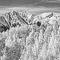 Colorado Rocky Mountain Autumn Beauty BW Print by James BO  Insogna