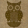 Colored Owl 3 of 4  Print by Kyle Wood