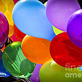Colorful balloons Poster by Elena Elisseeva