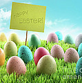 Colorful Easter eggs with sign in a field Print by Sandra Cunningham