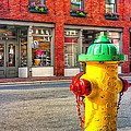 Colorful Fire Hydrant On The Streets of Asheville Poster by Mark Tisdale