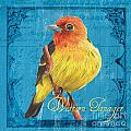 Colorful Songbirds 4 Poster by Debbie DeWitt