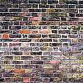 Colourful London Brick Wall Print by Tim Gainey