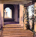 Columns and Flowers Print by Terry Reynoldson