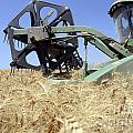 Combine harvester  Poster by Shay Fogelman