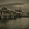 Conch House Marina Print by Mario Celzner