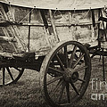 Conestoga Wagon Print by Paul W Faust -  Impressions of Light