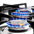 cooker gas hob with flames burning Poster by Fizzy Image