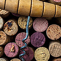 Corkscrew on top of wine corks Print by Garry Gay