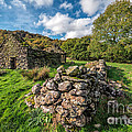 Cottage Ruin Print by Adrian Evans