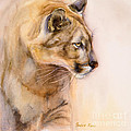 Cougar on the Prowl Poster by BONNIE RINIER