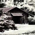 Country Charm In Dramatci BW Print by Darren Fisher