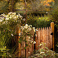 Country - Country autumn garden  Print by Mike Savad