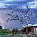 Country Horses Lightning Storm NE Boulder County CO HDR Poster by James BO  Insogna