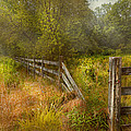 Country - Landscape - Lazy meadows Poster by Mike Savad