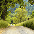Country Lane in the Smokies Poster by Andrew Soundarajan