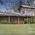 Country Life Print by Betty LaRue