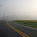 Country Road in Fog Print by Olivier Le Queinec