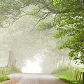 Country Road in the Fog Poster by Andrew Soundarajan