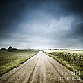 Country Road Through Fields, Denmark by Evgeny Kuklev