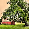 Country Scene Print by Kathleen Struckle