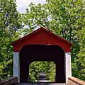 Covered Bridge Print by Olivier Le Queinec