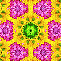 Crazy Daises - Spring Flowers - Bouquet - Gerber Daisy Wanna Be - Kaleidoscope 1 Poster by Andee Design