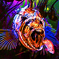 Creatures Of The Deep - Fear No Fish 5D24799 square Print by Wingsdomain Art and Photography