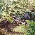 Creekside Smith Gilbert Gardens Print by Elizabeth Carr