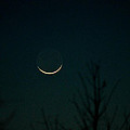 Crescent Moon Print by Jessica Brown