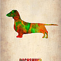 Dachshund Poster 2 Poster by Irina  March