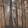 Dawn Print by Albert Casson