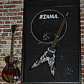 Death by Stereo Band Memorabilia-Autographed Guitar Poster by Renee Anderson