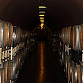 Deerfield Ranch Winery 5D22218 Poster by Wingsdomain Art and Photography