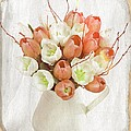 Deluxe Peach Tulips by Debra  Miller