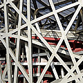 Detail of the Beijing National Stadium Print by Brendan Reals