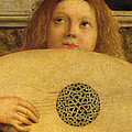 Detail of the San Giobbe Altarpiece Print by Giovanni Bellini