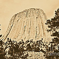 Devils Tower National Monument Between Trees Wyoming USA Rustic Print by Shawn OBrien
