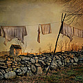 Dirty Linen Print by Robin-Lee Vieira