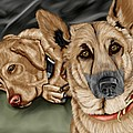 dogs Print by Karen Sheltrown