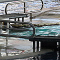 Dolphin Show - National Aquarium in Baltimore MD - 12122 Print by DC Photographer