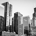 Downtown Chicago Buildings in Black and White Print by Paul Velgos