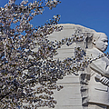 Dr Martin Luther King Jr Memorial Poster by Susan Candelario