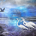 Dreaming of Egrets by the Sea III Poster by Betsy A  Cutler
