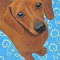Dreamy Doxie Print by Dana Feagin