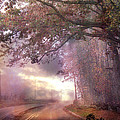 Dreamy Pink Nature Landscape - Surreal Foggy Scenic Drive Nature Tree Landscape  Poster by Kathy Fornal