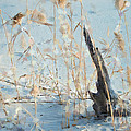 Driftwood Abstract Print by Betty LaRue