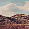 Dunes Impression Print by Angela Doelling AD DESIGN Photo and PhotoArt