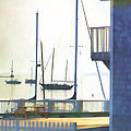 Early Morning Camden Harbor Maine Print by Carol Leigh