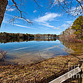 Early Spring on Long Pond Print by Michelle Wiarda